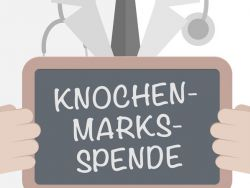 Knochenmarkspende