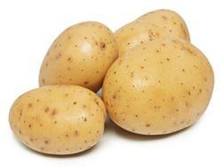 Bintje Kartoffelsorte