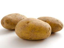 Linda Kartoffelsorte