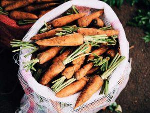 5 regionale Superfoods für den Power-Stoffwechsel