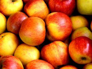 Apfelmus selber machen