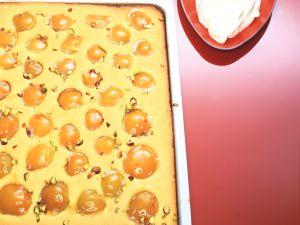Aprikosen-Grießkuchen Rezept