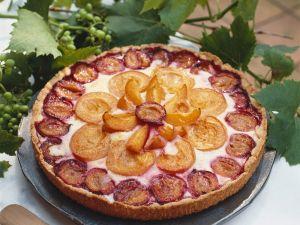 Aprikosen-Zwetschgen-Kuchen Rezept