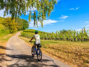 Sommer-Radtouren: Diese Routen sollten Sie kennen