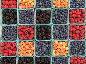 Die besten und gesündesten Beeren der Welt