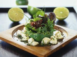 Blattsalat mit Jakobsmuscheln Rezept