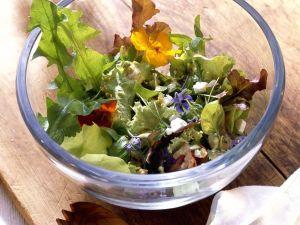 Blattsalat mit Käse Rezept