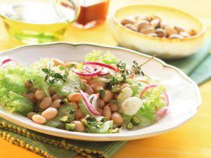 Bohnen-Sellerie-Salat Rezept