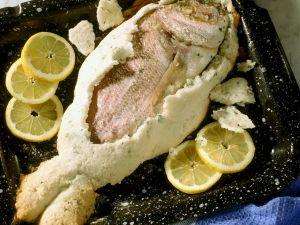 Brasse im Salzteig gebacken Rezept