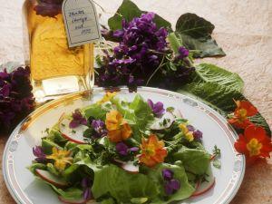 Bunter Salat mit Veilchen und Primeln Rezept