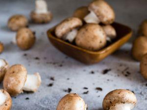 5 Gründe: Darum sind Champignons gesund