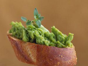 Crostini mit Avocadopüree Rezept