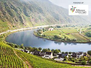 Wir lieben Wein aus Deutschland!