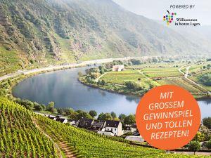 Genussvolle Weinwanderungen in den 13 deutschen Weingebieten