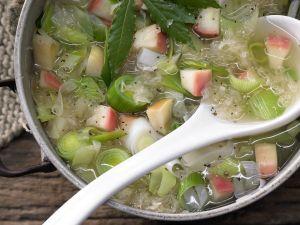 Diät Suppe Rezepte