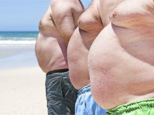 Warum Fett immer wiederkommt