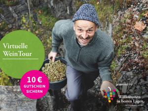 Holen Sie sich die 13 deutschen Weinregionen nach Hause