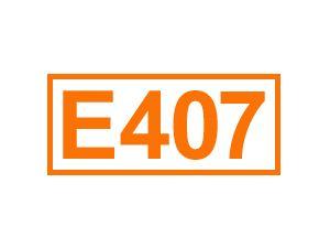 E 407 (Carrageen)