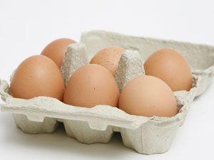 Bio-Eier nicht stärker belastet als konventionelle Eier