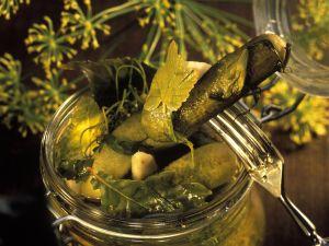 Eingelegte Gewürzgurken Rezept