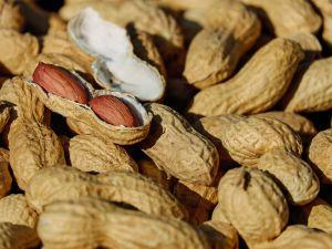 6 Gründe: Darum sind Erdnüsse gesund
