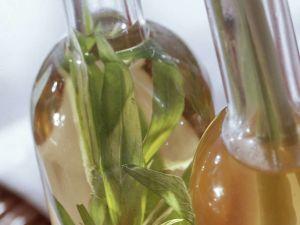 Essig mit Estragon und Melisse Rezept