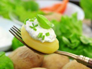 Fettarm kochen für Figurbewusste