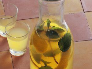 Frischer Likör mit Melisse und Minze Rezept