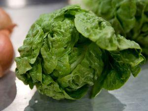 Frischetipps für den Salat