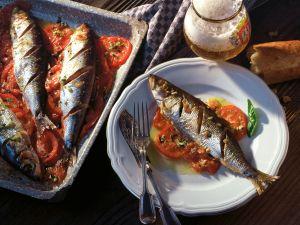 Gebratener Hering auf Tomaten Rezept