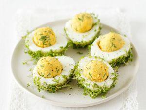Gefüllte Eier mit Kresse Rezept