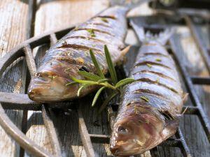 Gefüllte gegrillte Sardinen Rezept