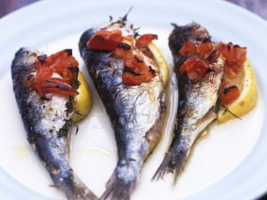 Gegrillte Sardinen Rezept