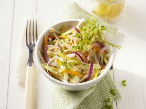 Gemüse-Sprossen-Salat Rezept