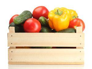 Das ABC der wichtigsten Gemüsesorten