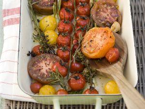 Geschmorte Tomaten Rezept