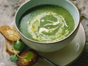 Grüne Suppe mit Kresse Rezept