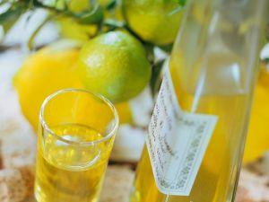 Hausmacher-Zitronenlikör Rezept