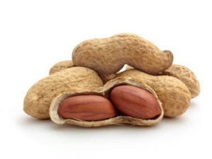 Sind Erdnüsse keine Nüsse?