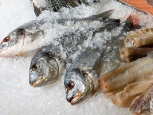 Ist Bio-Fisch besser für die Umwelt?