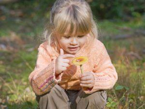 Pilze sammeln mit Kindern - aber sicher!