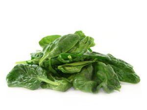 Die wichtigsten Fakten über Spinat