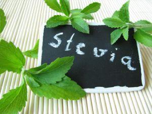 Stevia darf jetzt in den Joghurt