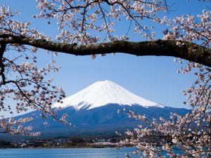10 Gerichte, die Sie in Japan unbedingt probieren sollten