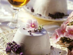 Joghurt Panna Cotta Rezept
