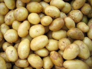 7 Gründe: Darum sind Kartoffeln gesund