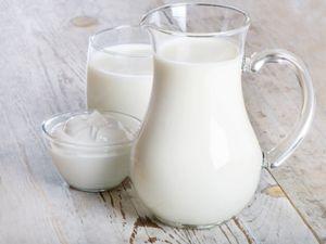 Das große Lactose-Special