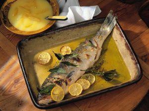 Loup de mer mit zitroniger Soße Rezept