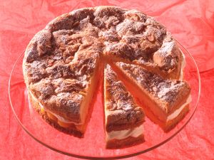 Mandarinen-Sahne-Torte Rezept