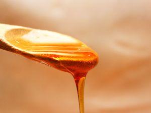 Gesunder Manuka-Honig: So stärkt er Ihr Immunsystem
